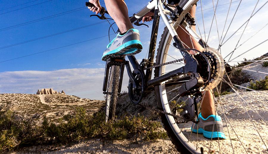 Branchen Mountainbike